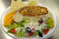Fish Plate_s